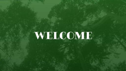Green Trees - Welcome