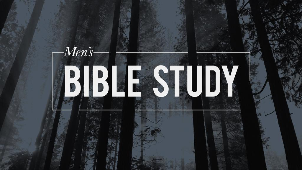 Forest Men's Bible Study large preview