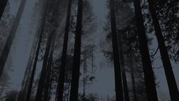 Forest Men's Bible Study content a PowerPoint Photoshop image