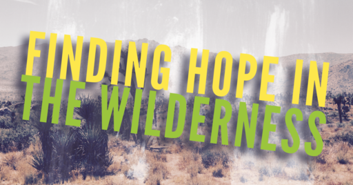 Finding Hope in the Wilderness