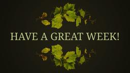 I Am the Vine have a great week! 16x9 PowerPoint image