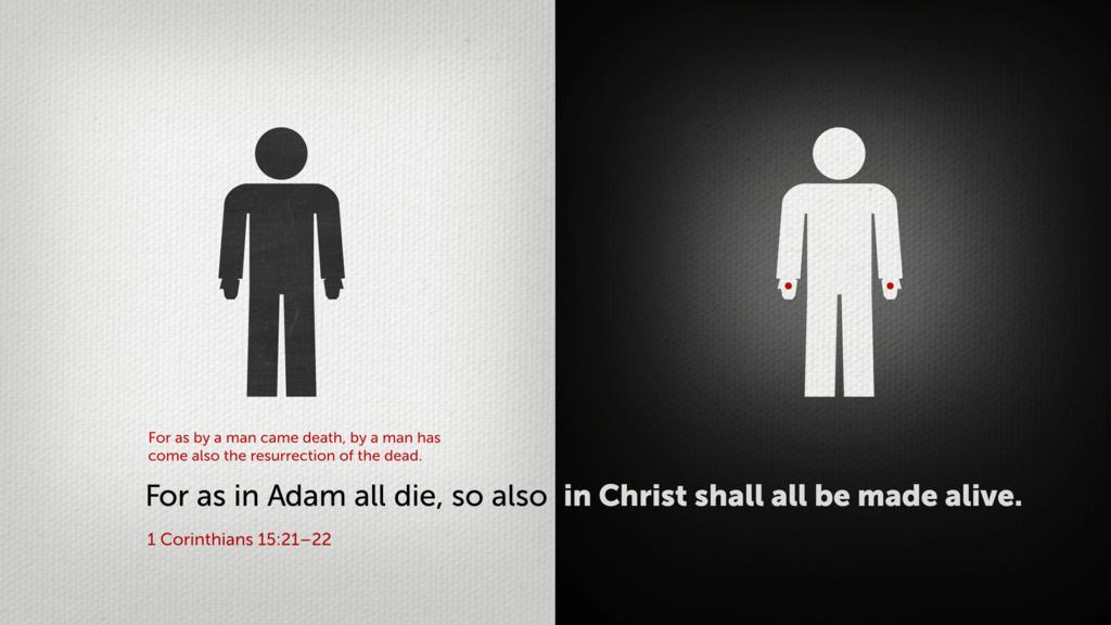 1 Corinthians 15:21–22 large preview
