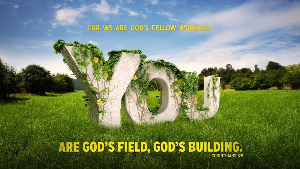 1 Corinthians 3:9 large preview
