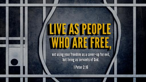1 Peter 2:16 verse of the day image