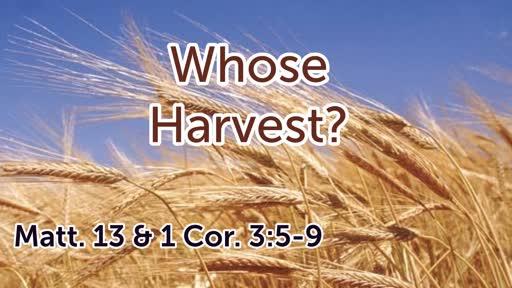 Whose Harvest?