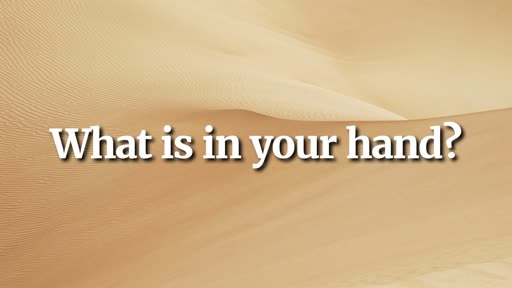 What is in your hand? - 8/11/2019