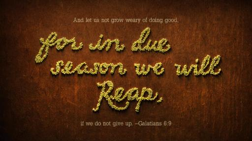 Galatians 6:9 verse of the day image