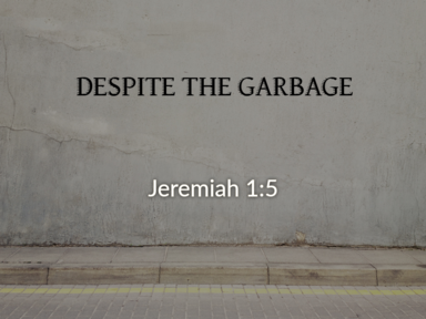 Despite the Garbage