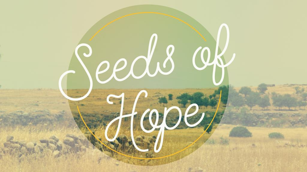 Seeds of Hope large preview