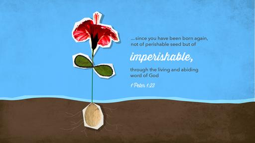 1 Peter 1:23 verse of the day image