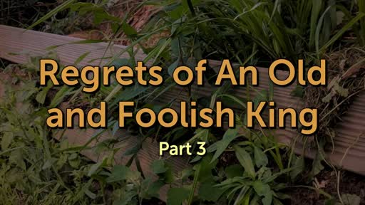 Regrets of An Old and Foolish King, Pt 3