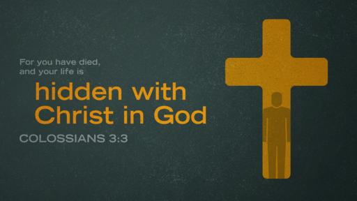 Colossians 3:3 verse of the day image