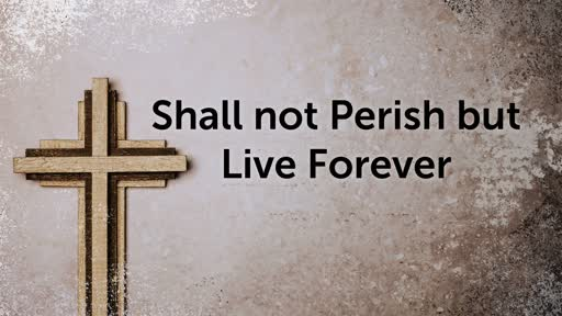 Shall not Perish but live forever