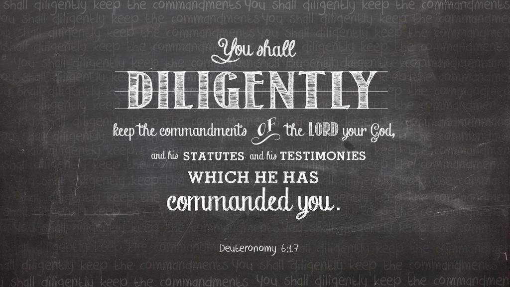 Deuteronomy 6:17 large preview