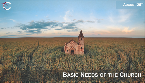 August 25, 2019:  Basic Needs of the Church