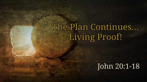 The Plan Continues... Living Proof!