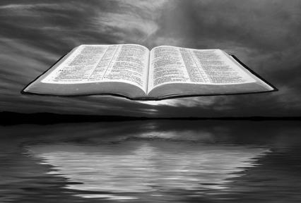 Responses to the Gospel