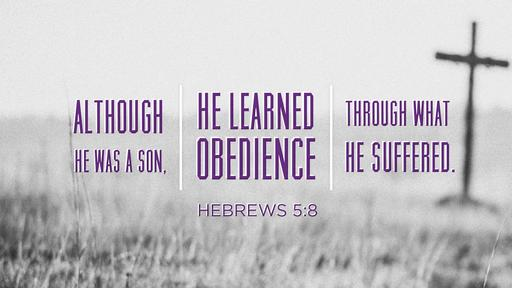 Hebrews 5:8 verse of the day image