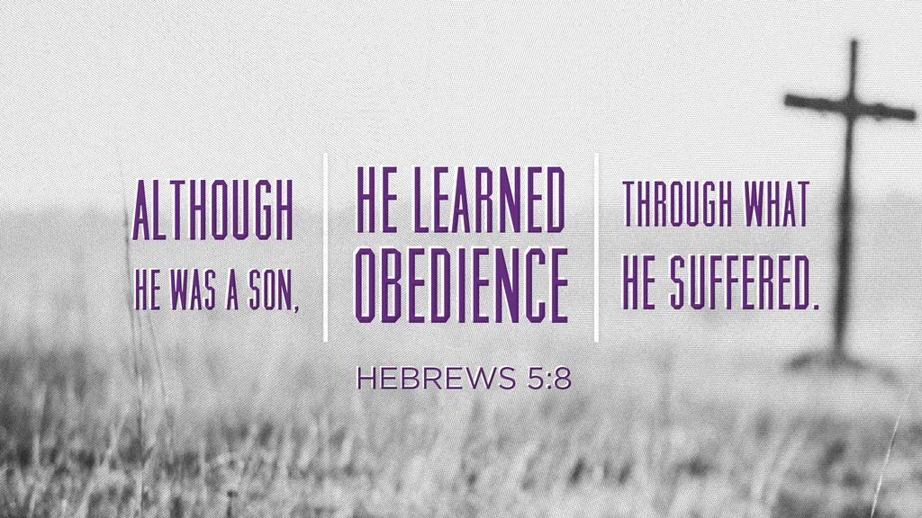 Hebrews 5:8 large preview