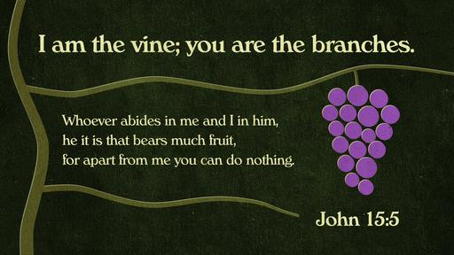 John 15:5 verse of the day image