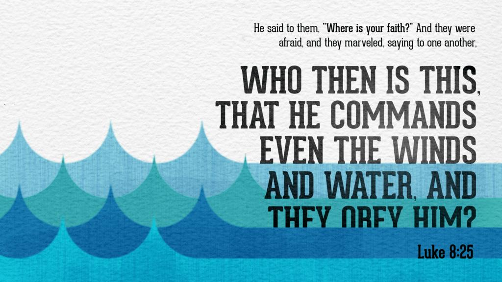 Luke 8:25 large preview