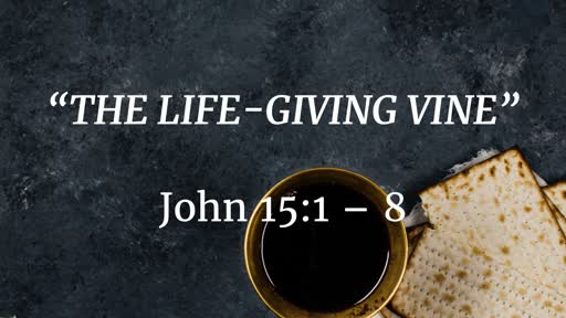 September 1 - The Life-Giving Vine