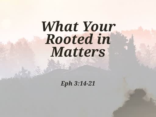 What Your Rooted in Matters