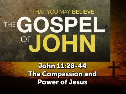 The Compassion and Power of Jesus