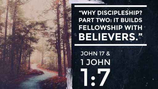 """Why Discipleship? Part Two: It Builds Fellowship with Believers"" (John 17:20-26 & 1 John 1:7))"