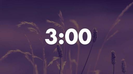 Purple Wildgrass - Countdown 3 min