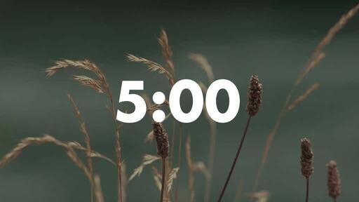 Normal Wildgrass - Countdown 5 min