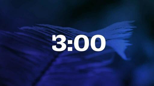 Blue Fern - Countdown 3 min