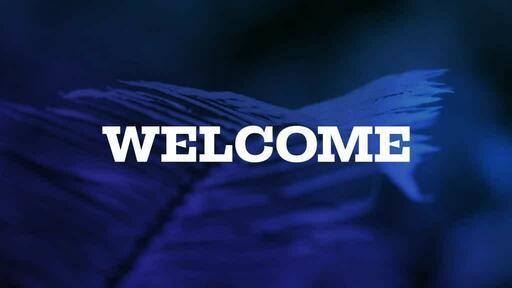 Blue Fern - Welcome
