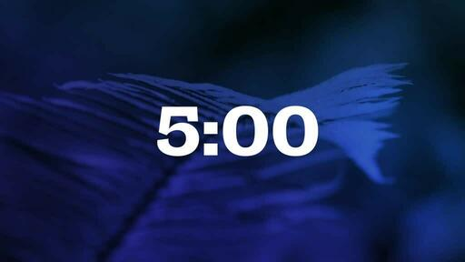 Blue Fern - Countdown 5 min