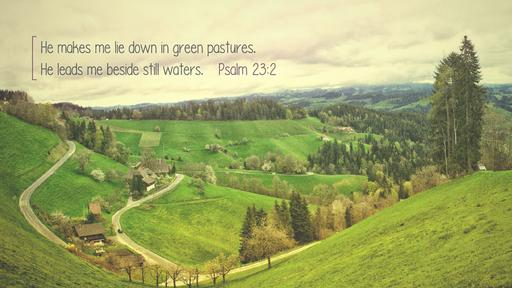 Psalm 23:2 verse of the day image