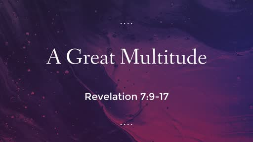 A Great Multitude