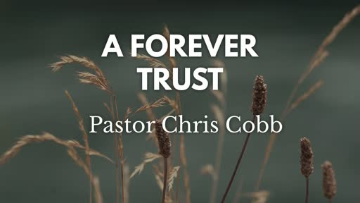 A Forever Trust
