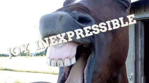 Joy Inexpressible