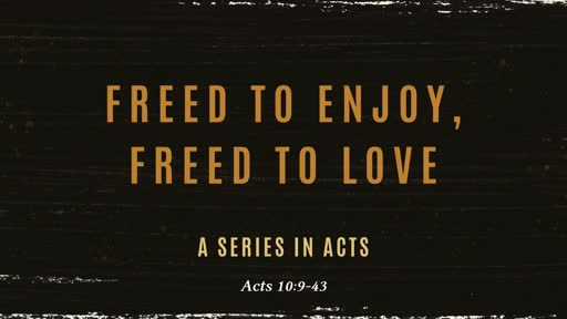 Freed to Enjoy, Freed to Love