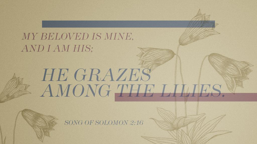 Song of Solomon 2:16 large preview