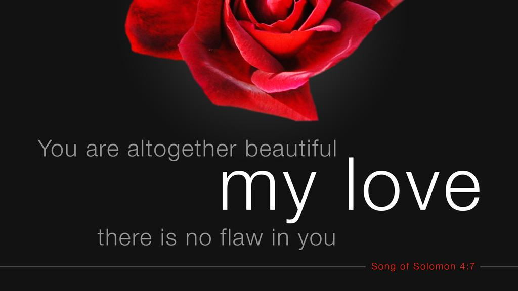 Song of Solomon 4:7 large preview