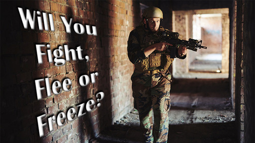 Will You Fight, Flee or Freeze?