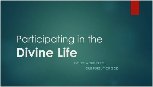 Participating in the Divine Life