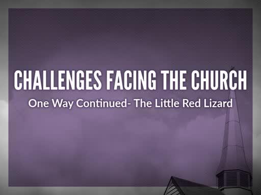 The Little Red Lizard
