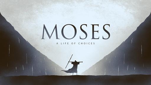 Choose to Trust the Lamb