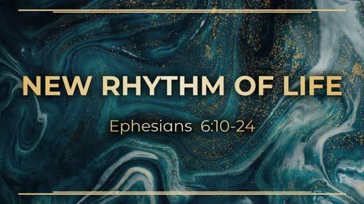 Week 14 - Rhythm of life