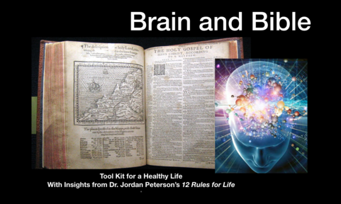 Brain and Bible