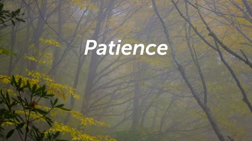 Patiently Patient takes Faith (revised)