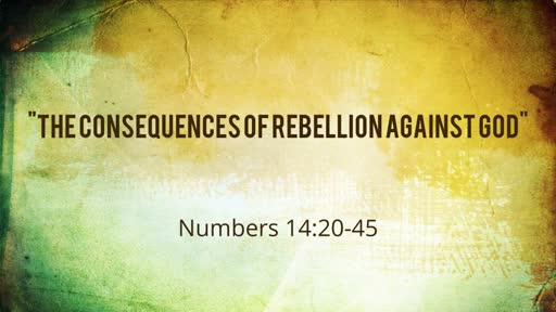 Numbers 14:20-45