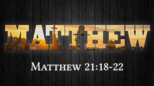 Matthew 21:18-22
